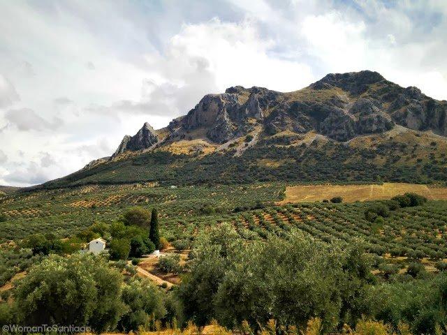 foto del camino mozarabe