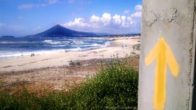 foto de flechas amarillas