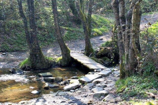foto de puente del camino