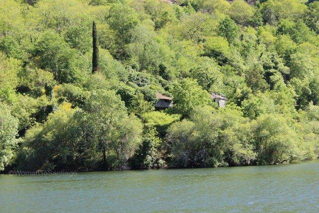 foto de orilla del rio