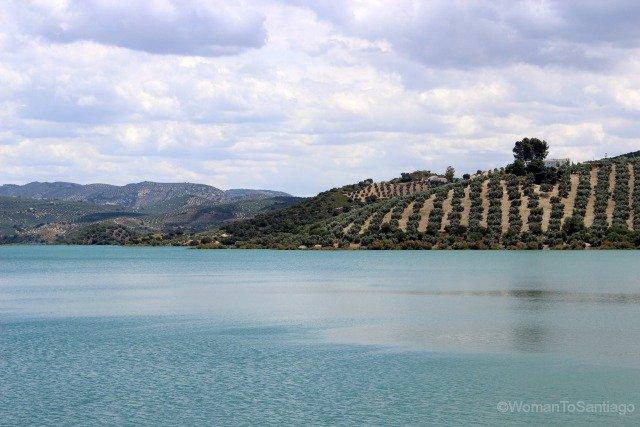 camino-mozarabe-cordoba-olivos-lago-iznajar
