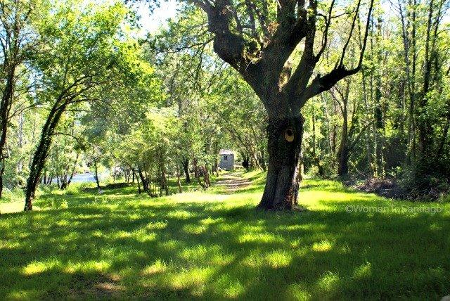 fervenza-casa-rural-lugo-galicia-womantosantiago