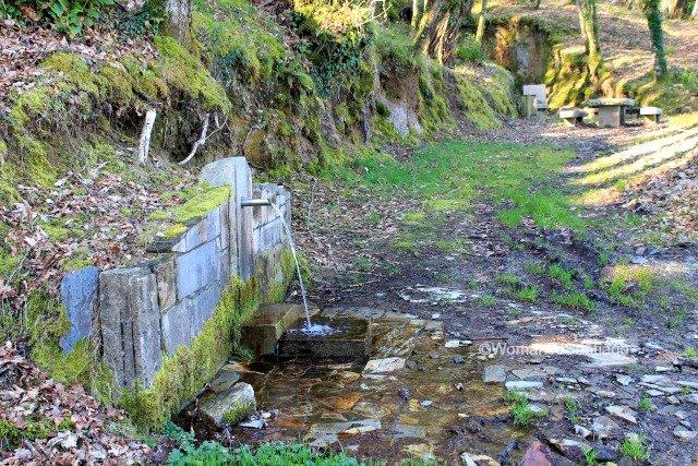 fuente-castroverde-camino-de-santiago-primitivo