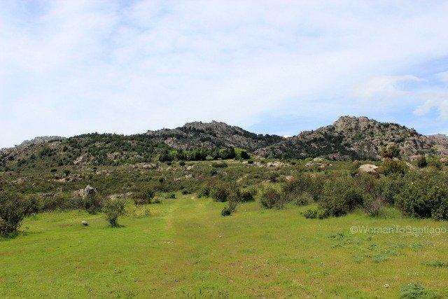 camino-de-santiago-madrid-prados-manzanares-el-real