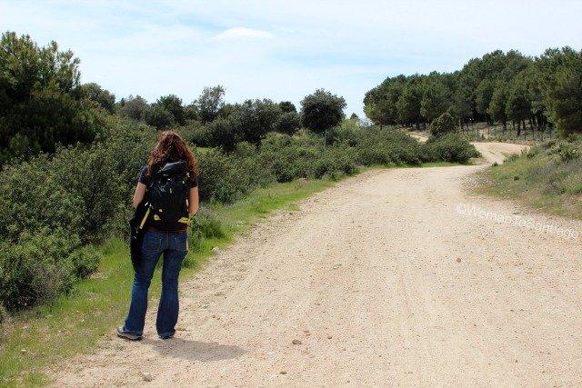 camino-de-santiago-madrid-via-pecuaria-manzanares-el-real
