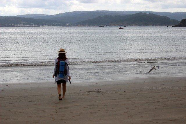 playa-basteira-camino-del-mar-carino-a-coruna-gaviota