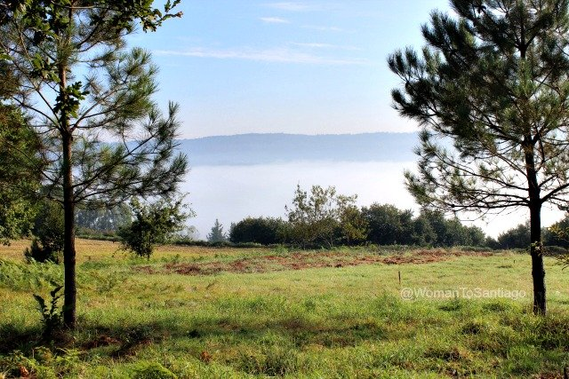 negreira-camino-de-santiago-fisterra-valle-niebla