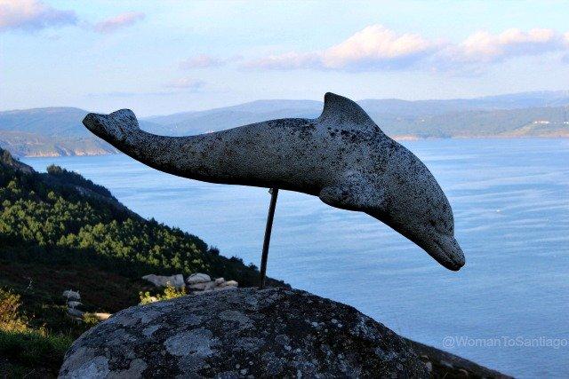 foto del delfin de fisterra