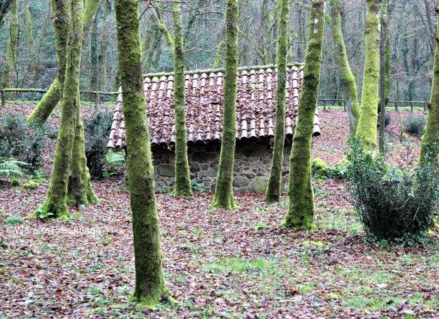 foto de casa