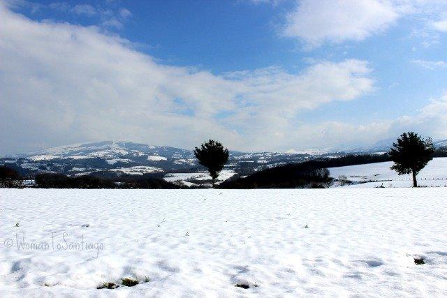 foto de prado nevado
