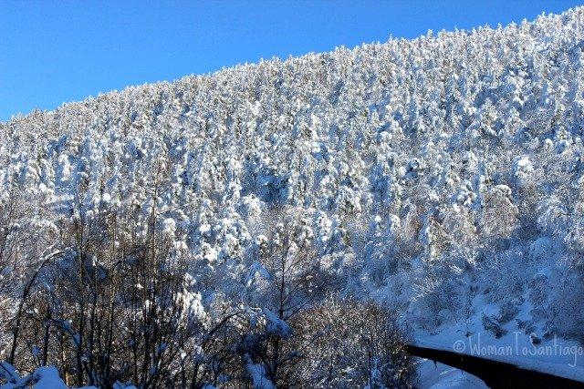 foto bajada del cebreiro nevado