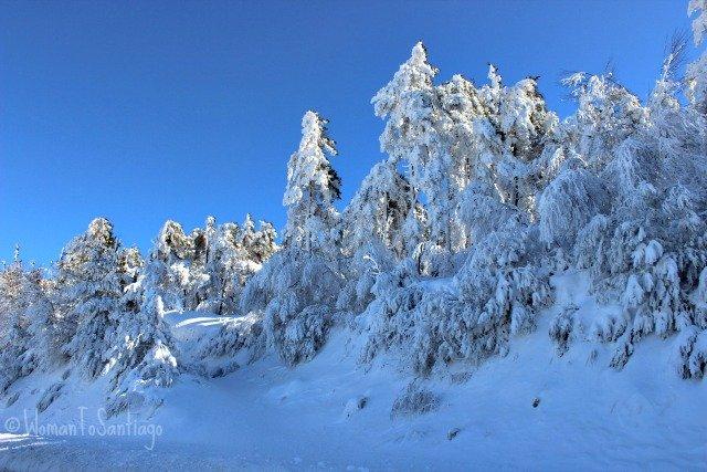foto del camino nevado