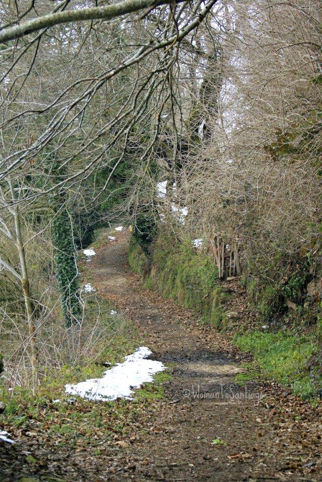 foto de la senda en cristovo