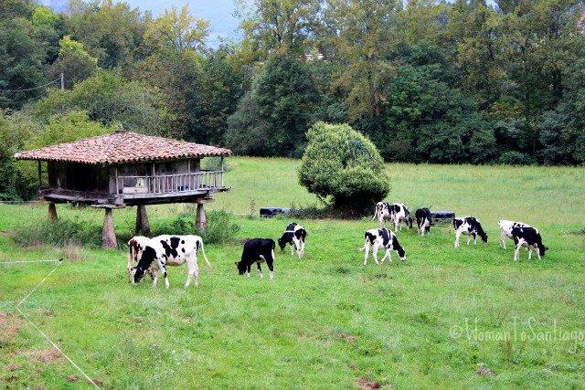 foto de horreo asturiano