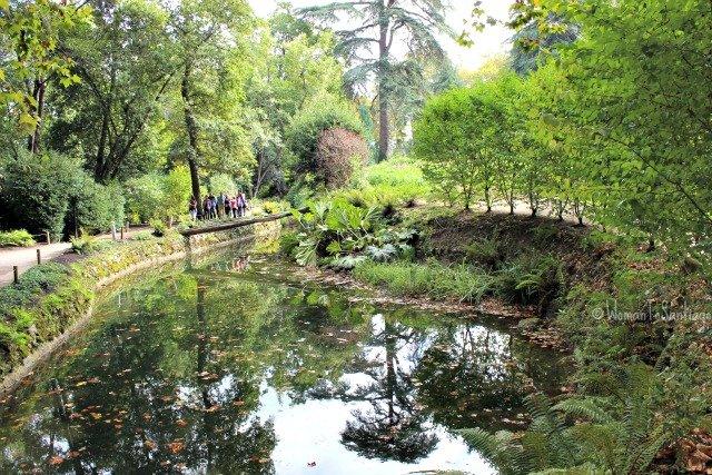 foto del estanque