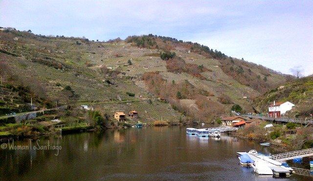 foto de vides en el rio