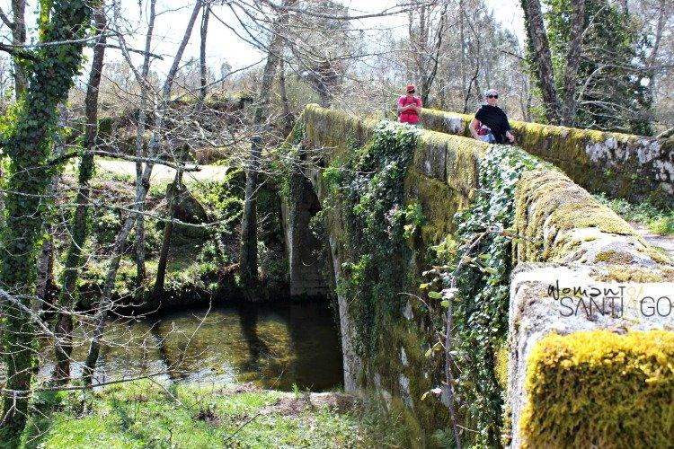 camino-sanabres-tamallancos-puente
