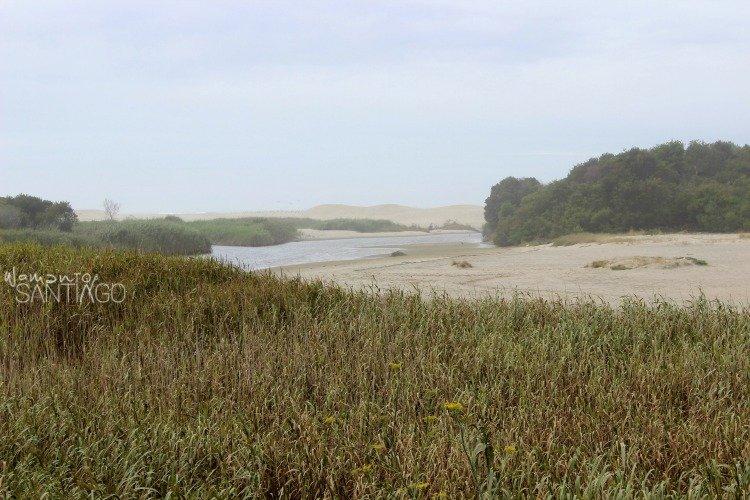 dunas-moledo-camino-portugues-de-la-costa
