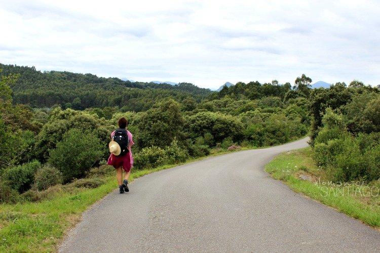 camino-de-santiago-del-norte