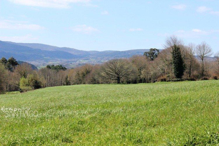 paisaje-camino-sanabres