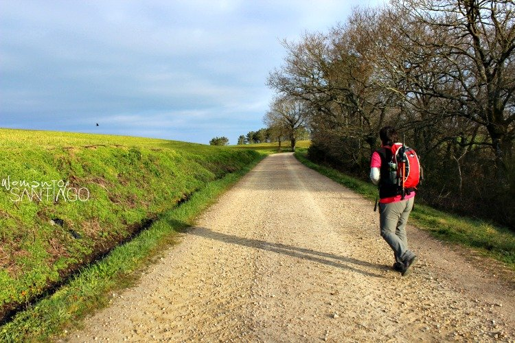 foto de camino con peregrina