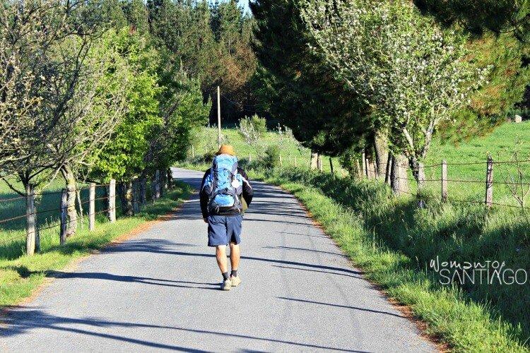 Foto del Camino de Santiago en 3 días