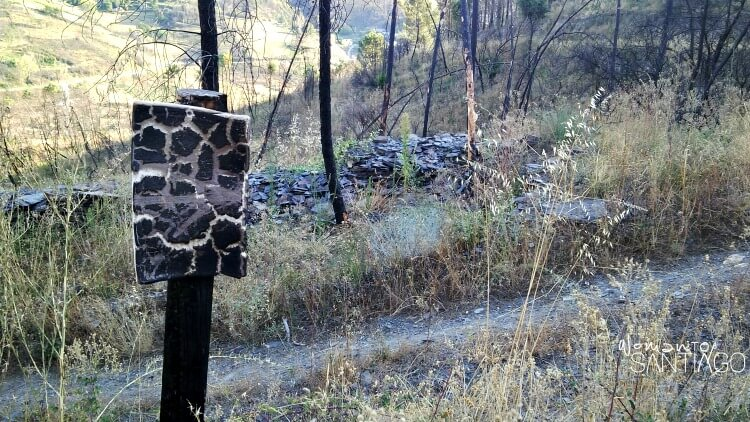 foto de flecha quemada en mitad de un sendero