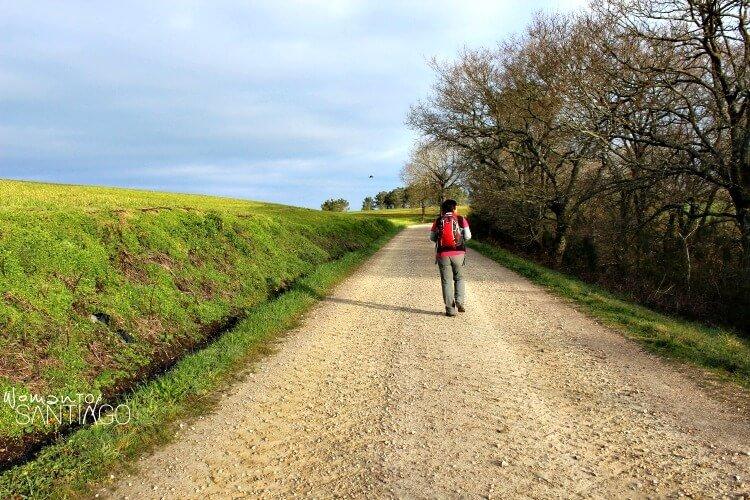 peregrino con mochila en mitad de un sendero