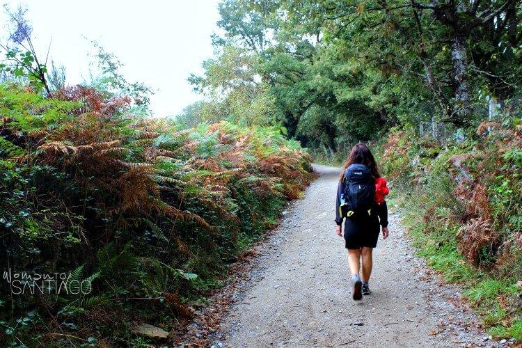 noelia andando por el camino de santiago