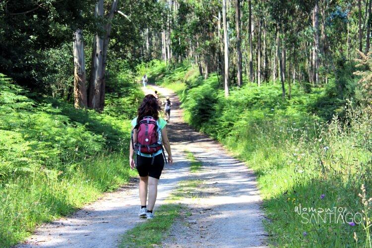 foto de peregrina caminando por un sendero verde