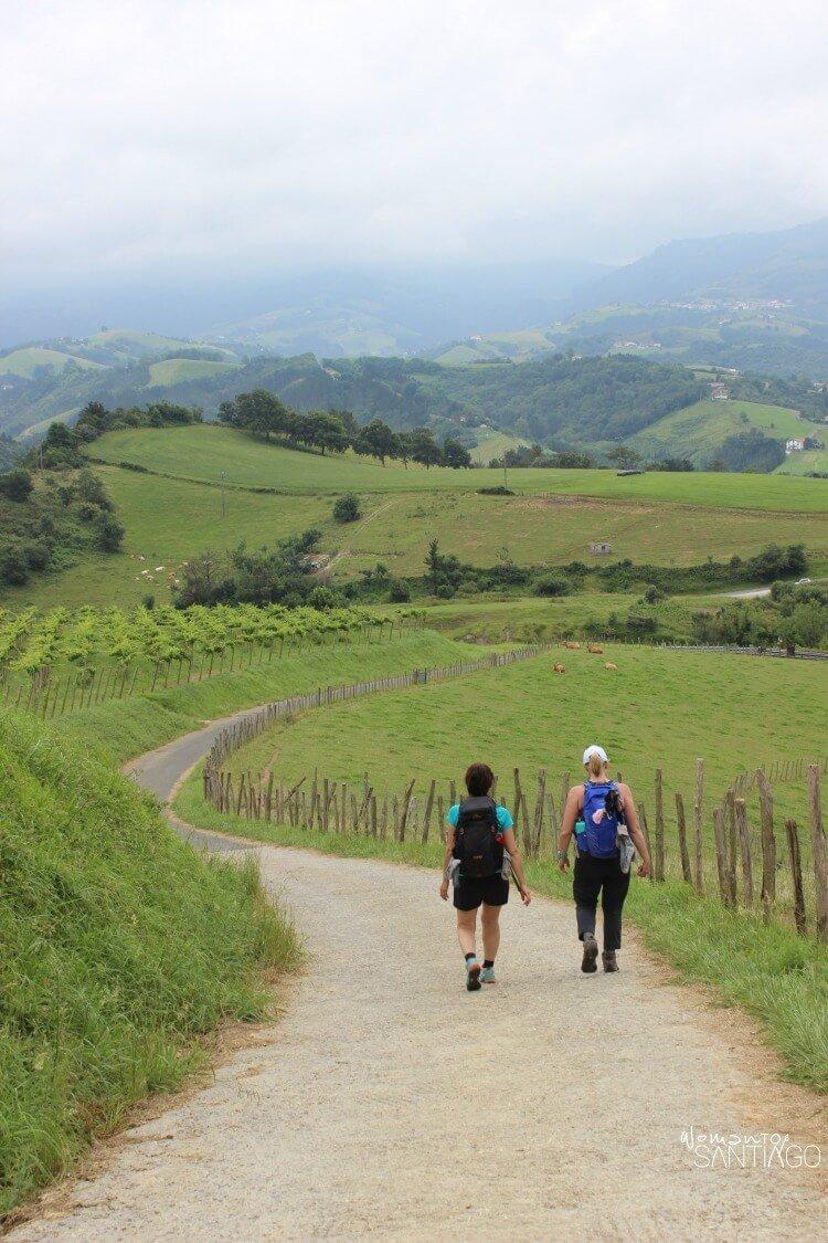 peregrinos por sendero verde