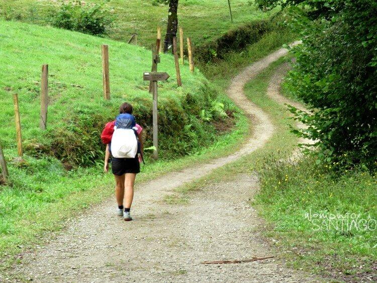 peregrina por sendero verde