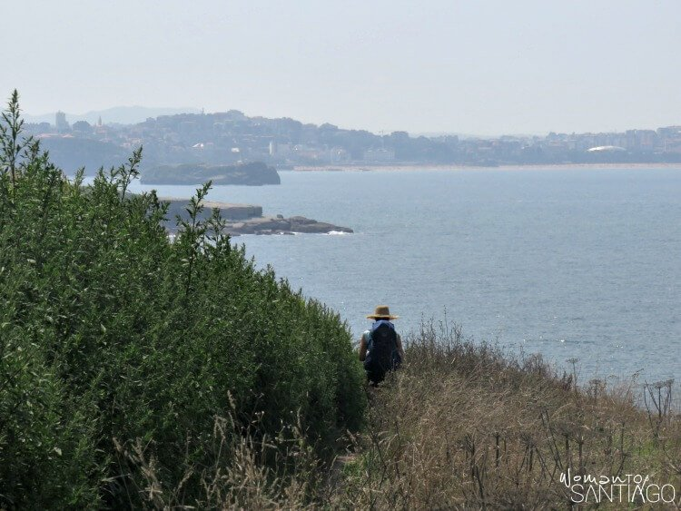 paisaje del camino mar y verde