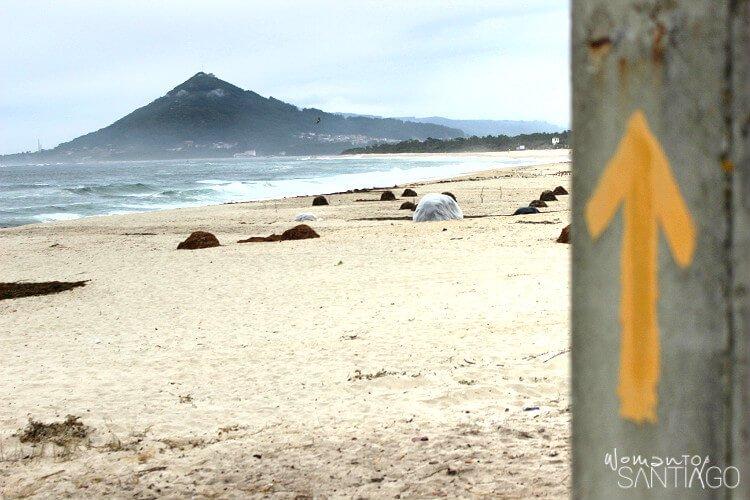 etapas del camino de santiago portugues por la costa