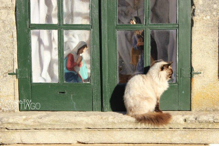 ventana con la virgern rezando