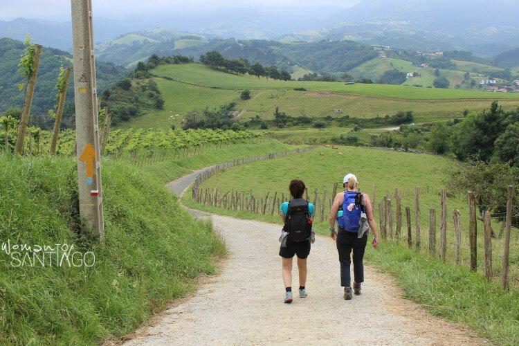 paisaje y peregrinos caminando