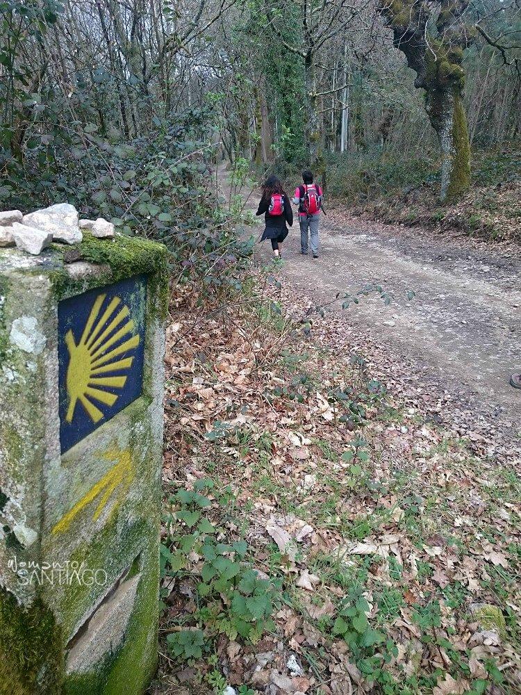 paisaje con peregrinas con sendero