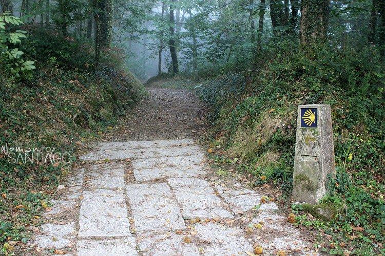 Sendero Camino de Santiago