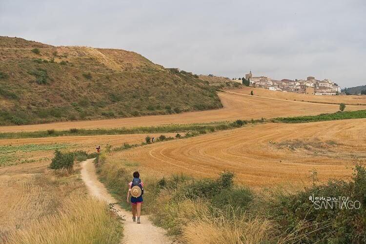 Precioso paisaje Camino de Santiago