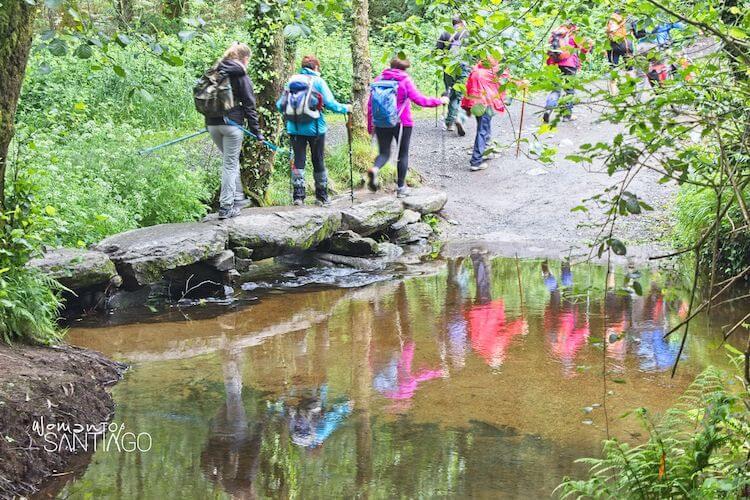 peregrinos cruzando por un puente lleno de frondosa vegetación