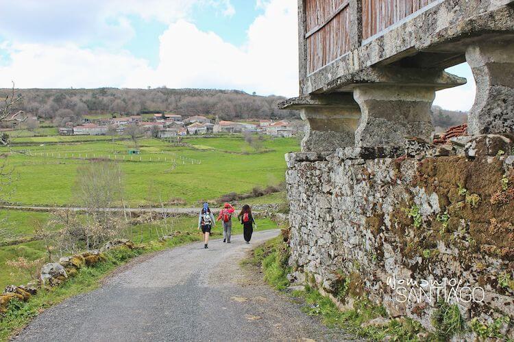 peregrinas caminando por ladera verder