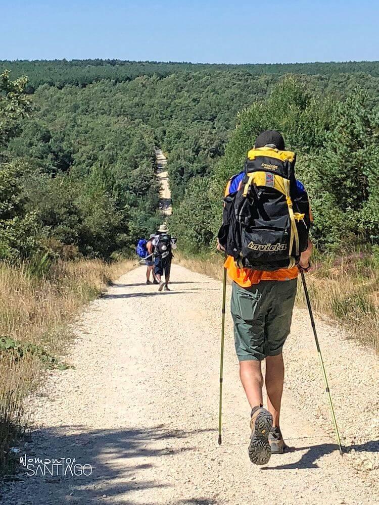 peregrinos caminando