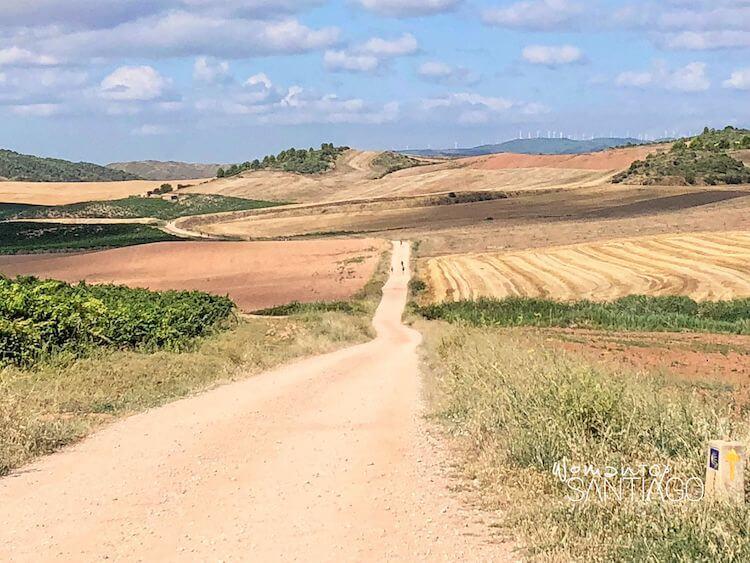 paisaje del Camino