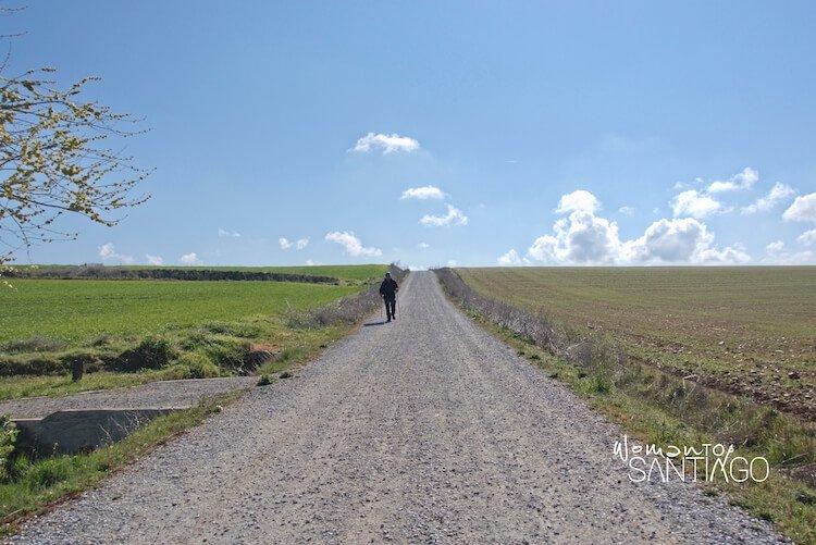 peregrino por los campos de castilla
