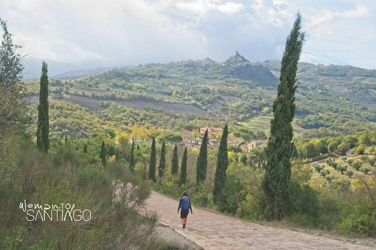 Peregrina caminando por un sendero y bosque verde