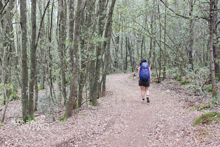 chica camina por el bosque