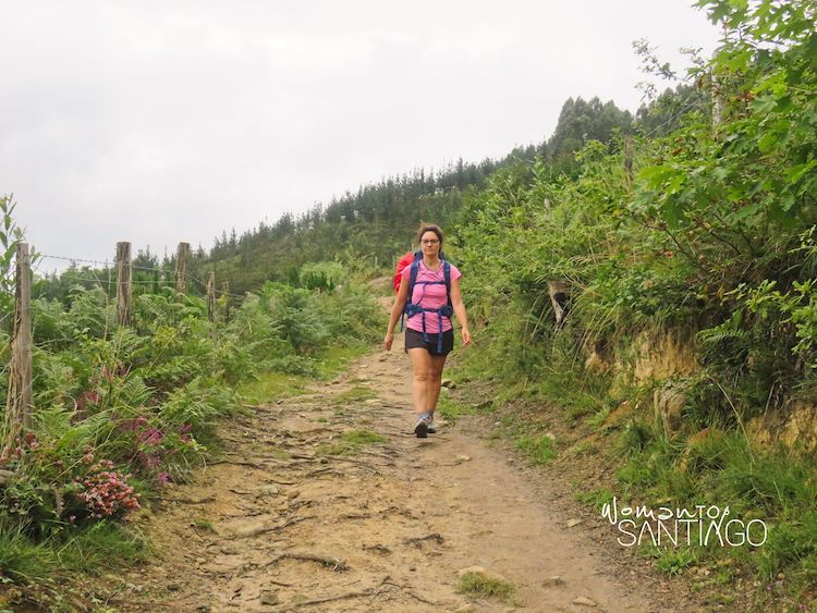 Caminante en el Camino del Norte