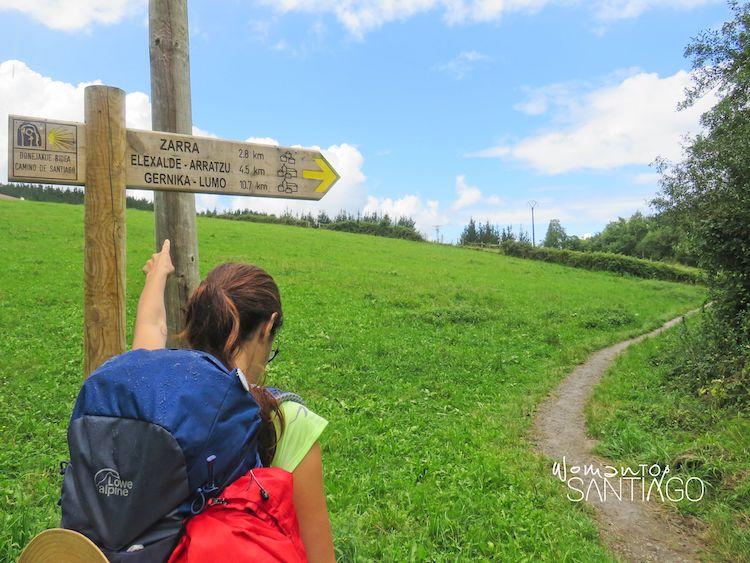 Señales del Camino de Santiago en el País Vasco