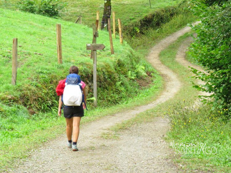 Tramo del Camino de Santiago hasta Santo Toribio de Liébana