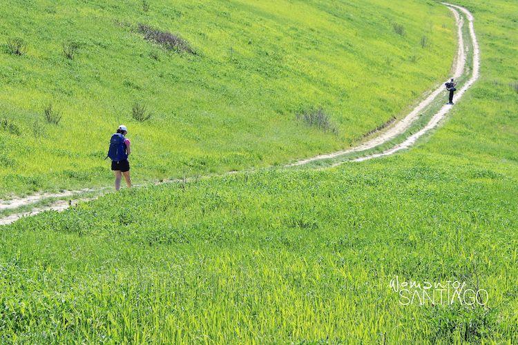 Senda del Camino de Santiago en Italia